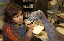 Photo credit: Roderick Mickens © American Museum of Natural History